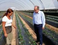Περιφέρεια: Χρονιά στήριξης των νέων αγροτών το 2018 - Εγκρίθηκαν και χρηματοδοτήθηκαν 1.731 σχέδια σε Αιτωλοακαρνανία, Αχαΐα και Ηλεία