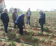 Ξεκίνησε από τον ΕΛΓΑ η καταγραφή των ζημιών στις καλλιέργειες Δυτικής Αχαΐας και Ηλείας