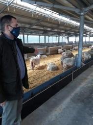 Επίσκεψη Αντιπεριφερειάρχη Θ. Βασιλόπουλου στη μονάδα προβατοτροφίας Μιλιόρα Φαρμ